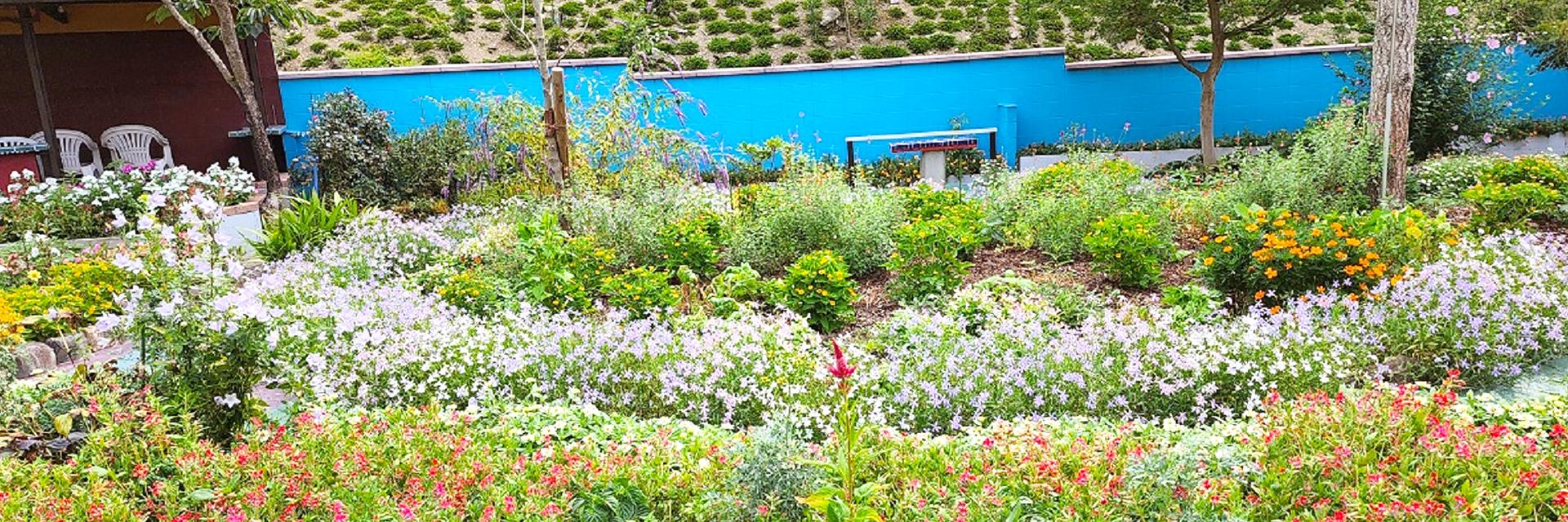 心安らぐ自慢の庭園 四季折々のお花や木々がひとときの安らぎを与えてくれています。